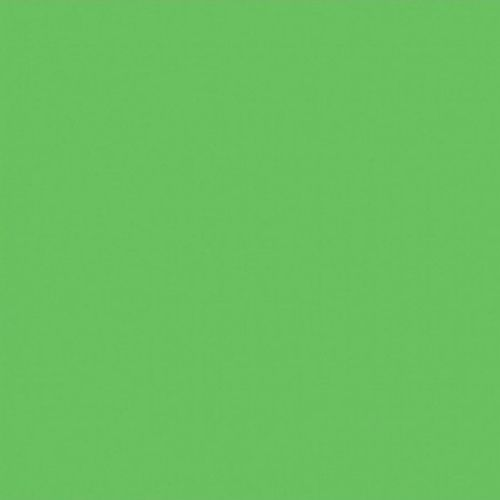 Studio background paper BD 132 green
